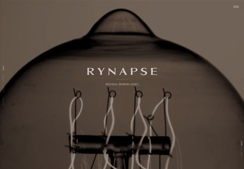 RYNAPSE HOLDINGS INC.